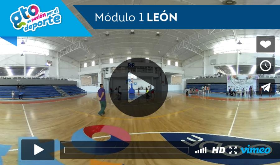 modulo 1 leon
