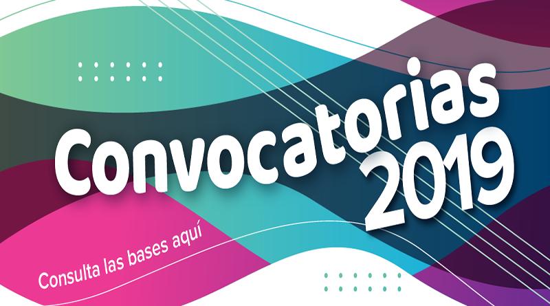 convocatoria 2019-01
