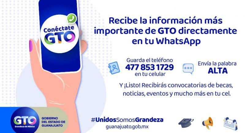 ConectateGTO-883x500